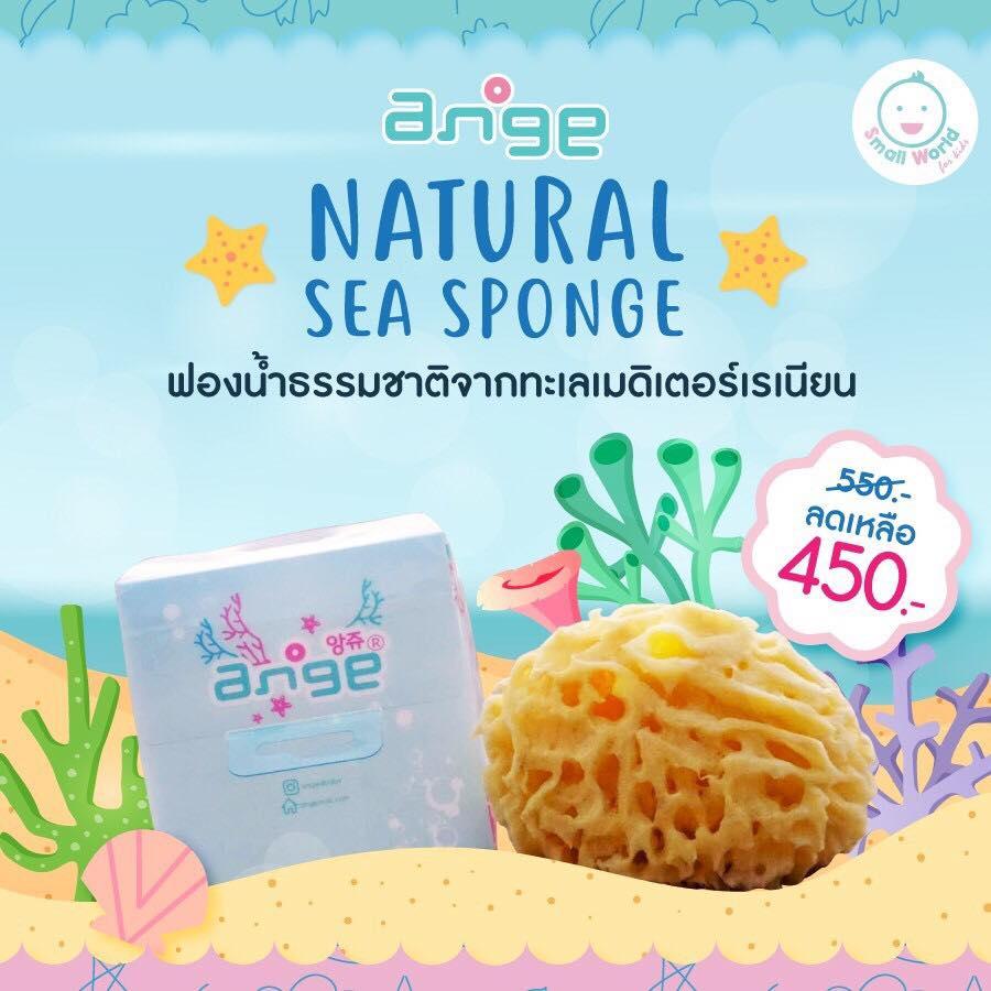 Ange Natural Sea Sponge ฟองน้ำทะเลธรรมชาติ